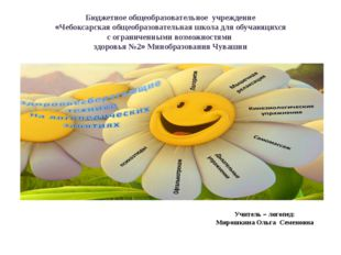 Бюджетное общеобразовательное учреждение «Чебоксарская общеобразовательная шк