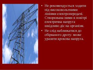 Не рекомендується ходити під високовольтними лініями електропередачі. Створюв