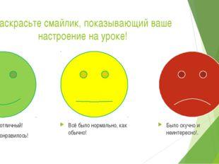 Раскрасьте смайлик, показывающий ваше настроение на уроке! Урок был отличный!