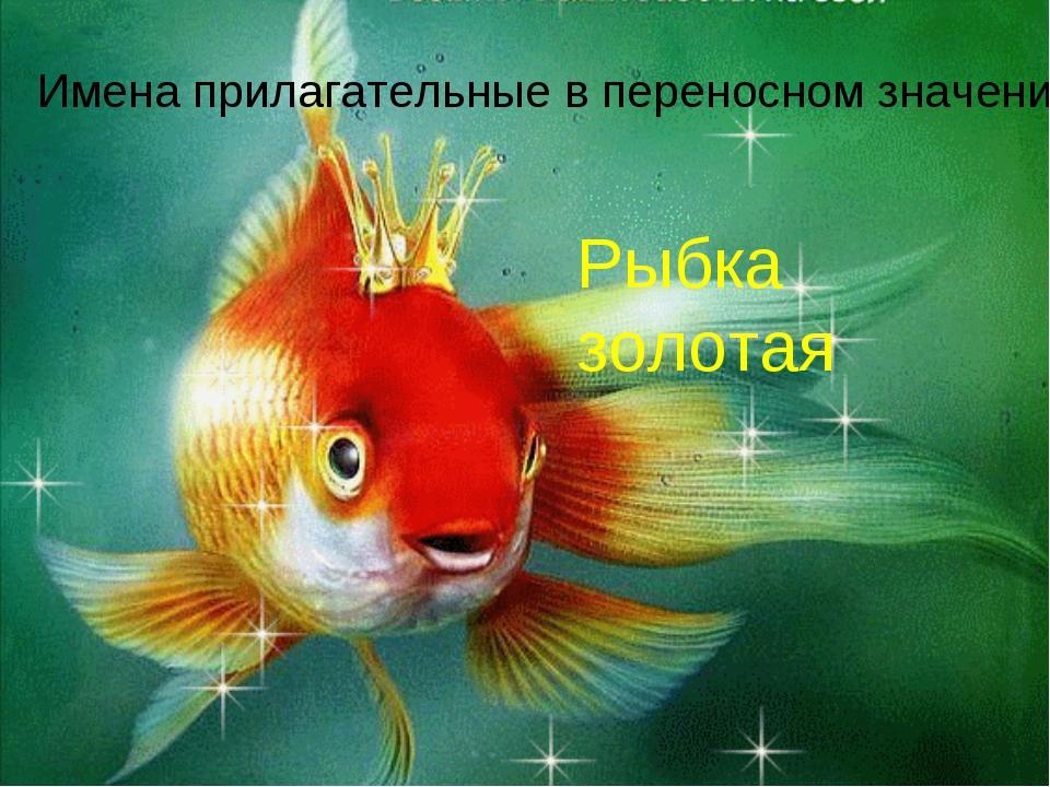Имена прилагательные в переносном значении Рыбка золотая