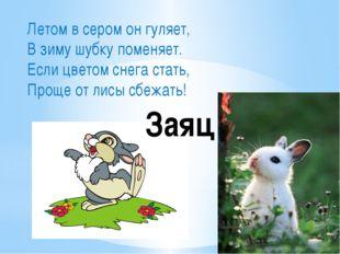 Летом в сером он гуляет, В зиму шубку поменяет. Если цветом снега стать, Прощ