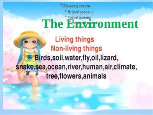 Living things Non-living things Birds,soil,water,fly,oil,lizard, snake,sea,oc