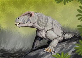 http://www.dinozavro.ru/paleontolog/images/mezozoy%20anteozavr.jpg