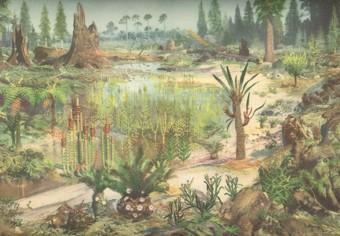 http://www.dinozavro.ru/paleontolog/images/mezozoy_flora.jpg