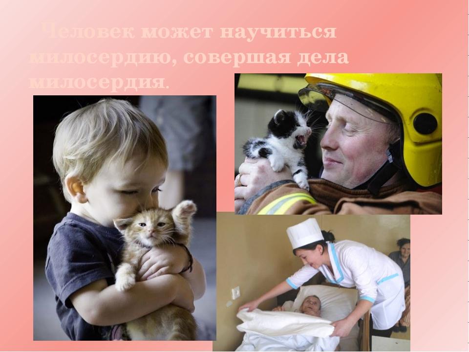 Картинки о милосердии и сострадании для детей