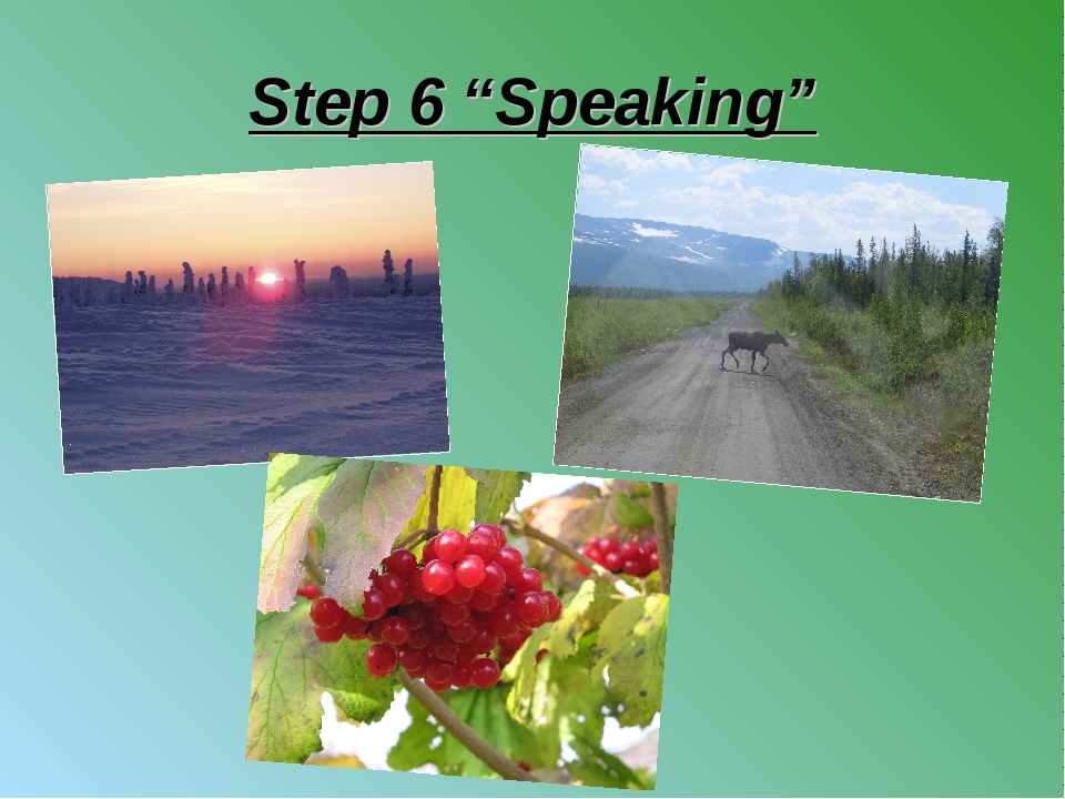 "Step 6 ""Speaking"""