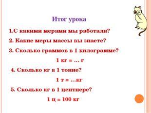 Итог урока 1.С какими мерами мы работали? 2. Какие меры массы вы знаете? 3. С