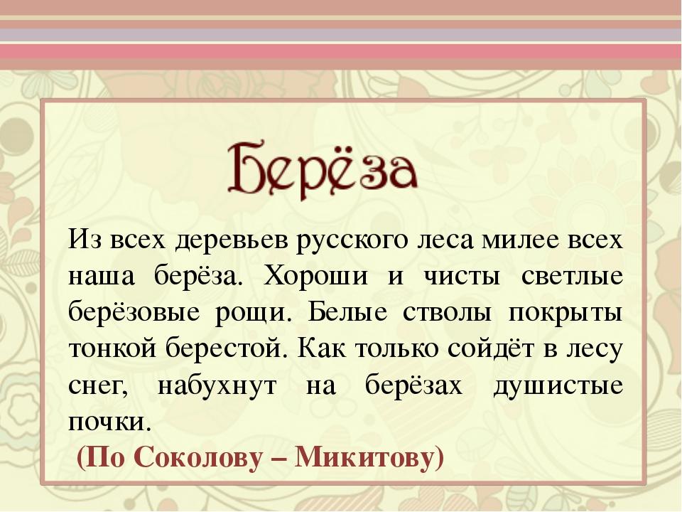 Из всех деревьев русского леса милее всех наша берёза. Хороши и чисты светлые...