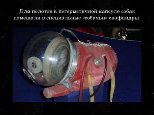 Для полетов в негерметичной капсуле собак помещали в специальные «собачьи» ск