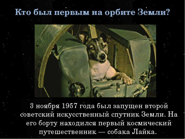 Кто был первым на орбите Земли? 3 ноября 1957 года был запущен второй советск...