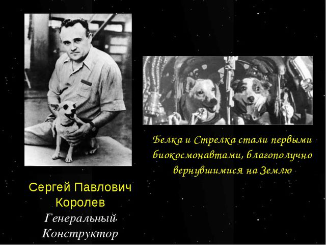 Сергей Павлович Королев Генеральный Конструктор Белка и Стрелка стали первыми...