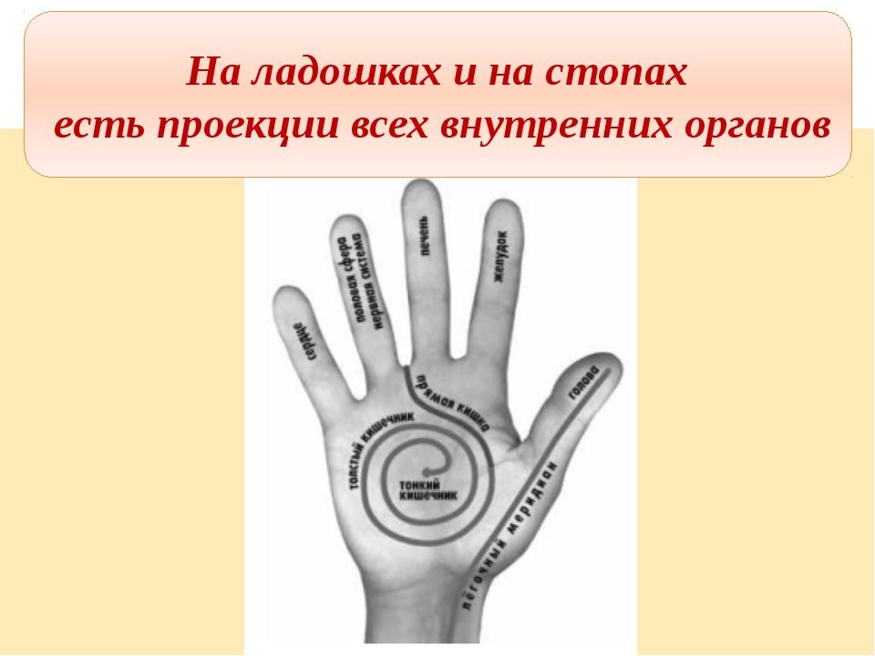 На ладошках и на стопах есть проекции всех внутренних органов На ладошках и н...