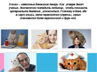 Кошки – известные домашние лекари. Как утверждают ученые , достаточно поглади