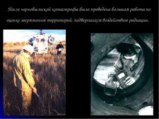 После чернобыльской катастрофы была проведена большая работа по оценке загряз