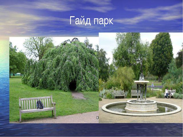 Гайд парк