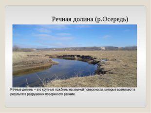 Речная долина (р.Осередь) Речные долины – это крупные ложбины на земной пове