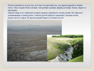 Ручьи отличаются от рек тем, что текут не круглый год, а во время дождей и та