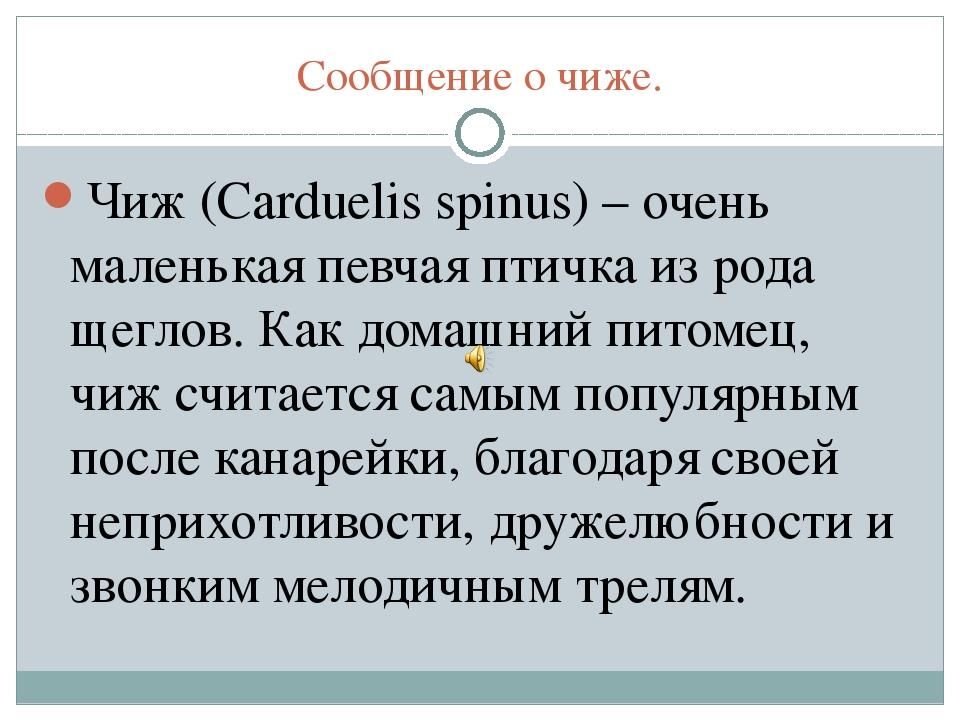 Сообщение о чиже. Чиж (Carduelis spinus) – очень маленькая певчая птичка из р...