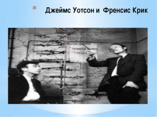 Джеймс Уотсон и Френсис Крик