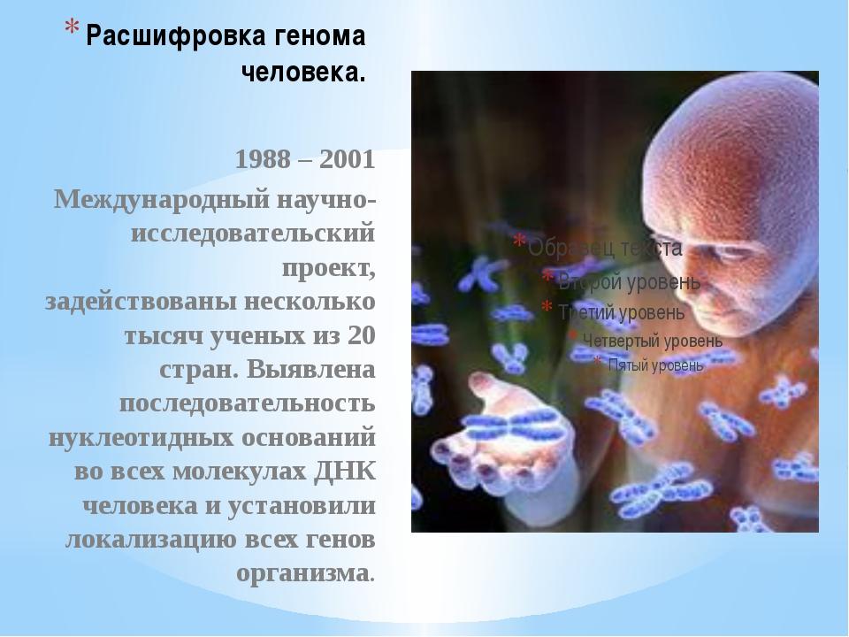 Расшифровка генома человека. 1988 – 2001 Международный научно-исследовательск...