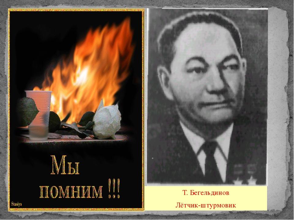 Т. Бегельдинов Лётчик-штурмовик