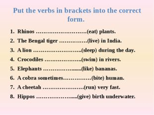Put the verbs in brackets into the correct form. Rhinos ………………………(eat) plants
