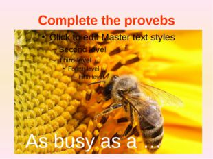 Complete the provebs As busy as a … As busy as a