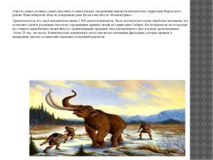 Одно из самых поздних, самых массовых и самых южных захоронений мамонтов нах