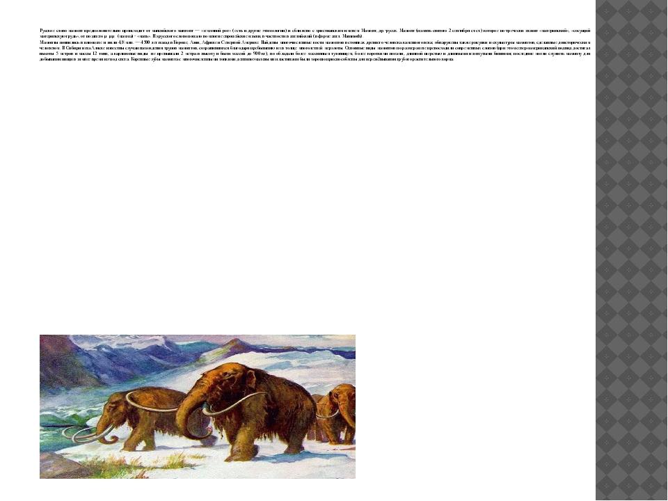 Русское слово мамонт предположительно происходит от мансийского мангонт — «з...