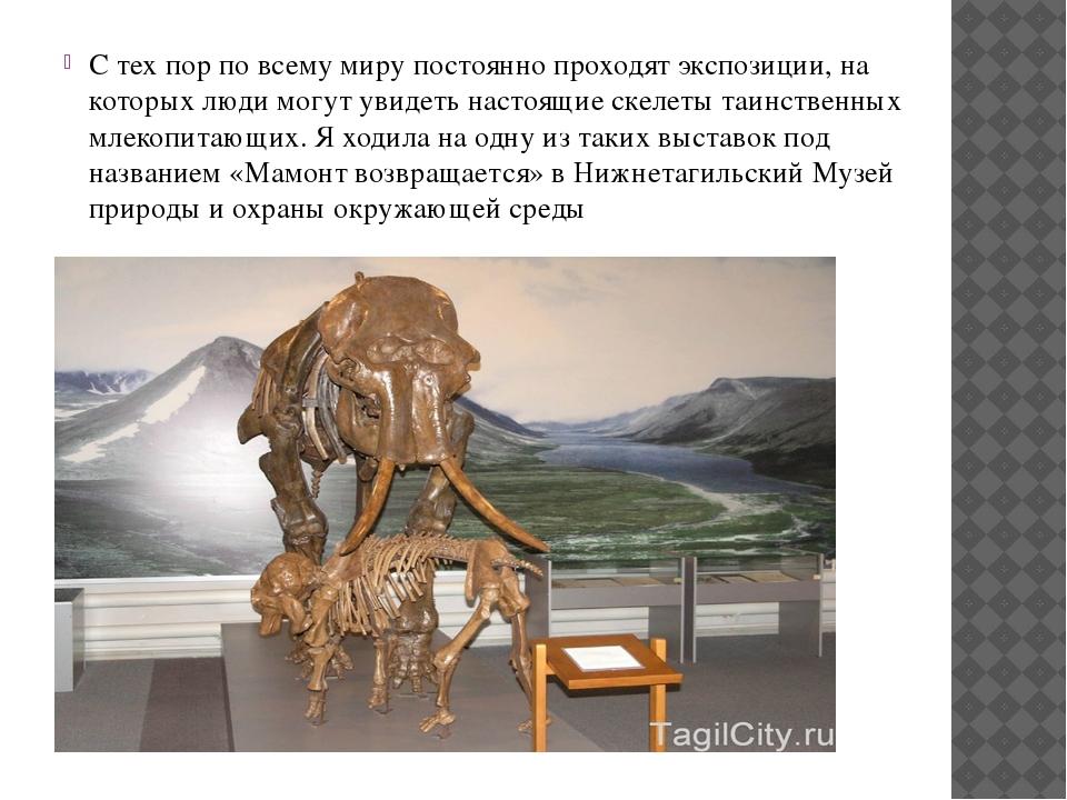 С тех пор по всему миру постоянно проходят экспозиции, на которых люди могут...
