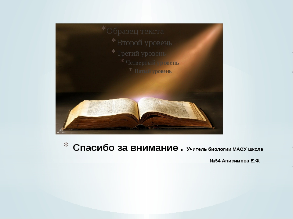 Спасибо за внимание . Учитель биологии МАОУ школа №54 Анисимова Е.Ф.