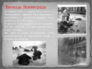 24 января 1944 г. силами Волховского и Ленинградского фронтов было предпринят