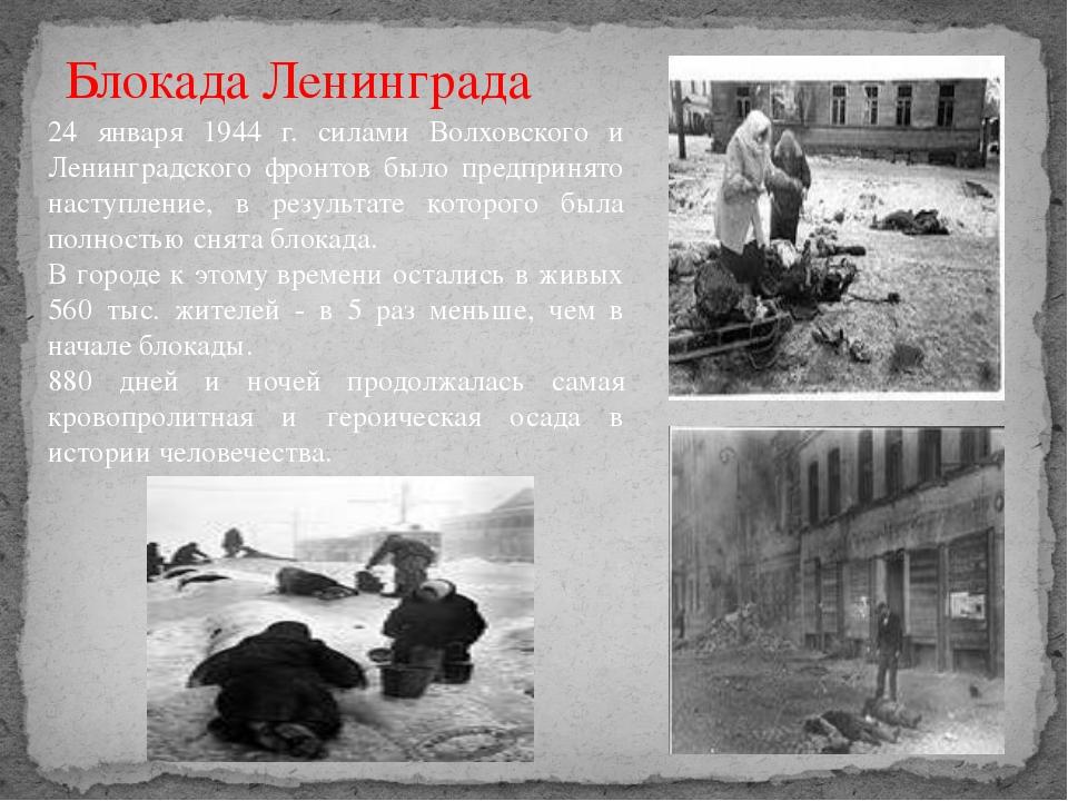 24 января 1944 г. силами Волховского и Ленинградского фронтов было предпринят...