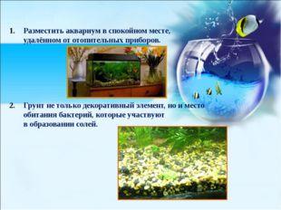 Разместить аквариум в спокойном месте, удалённом от отопительных приборов. Гр