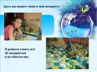 (созданная человеком) Здесь вы видите меня и мой аквариум: Я решила узнать в