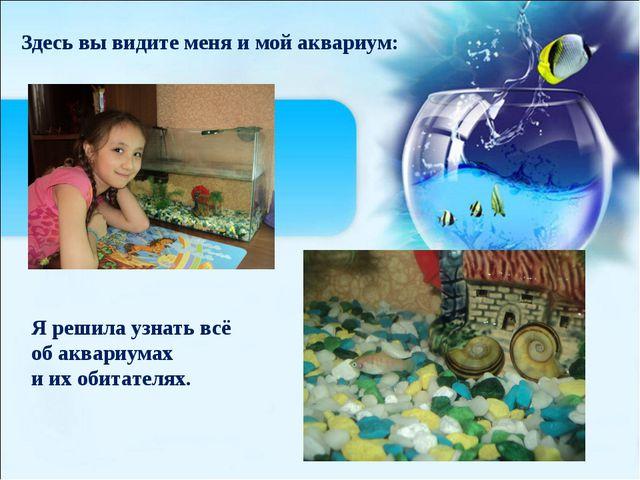 (созданная человеком) Здесь вы видите меня и мой аквариум: Я решила узнать в...
