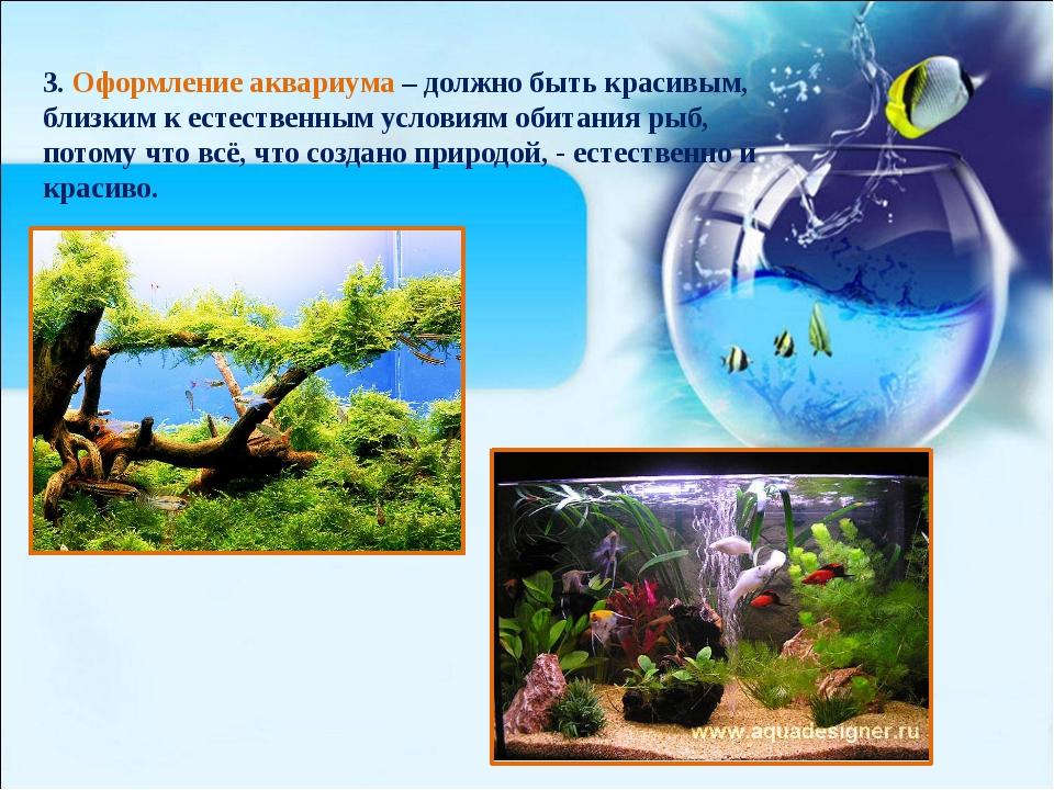 3. Оформление аквариума – должно быть красивым, близким к естественным услови...