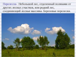 Перелесок- Небольшой лес, отделенный полянами от других лесных участков, или