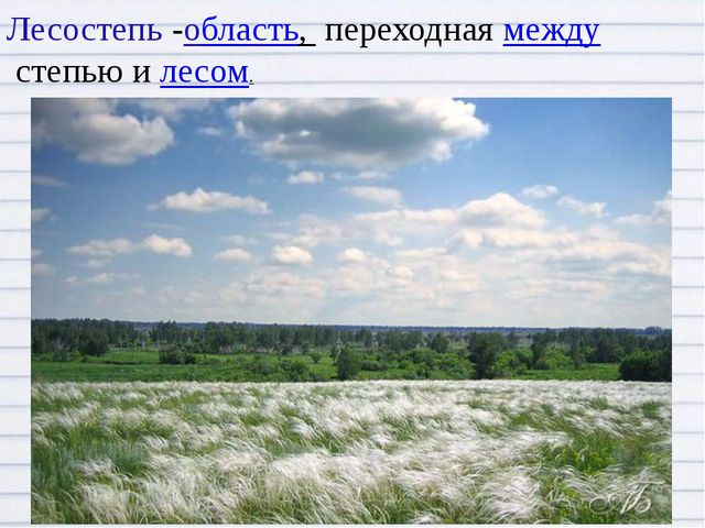 Лесостепь -область, переходнаямеждустепью илесом.