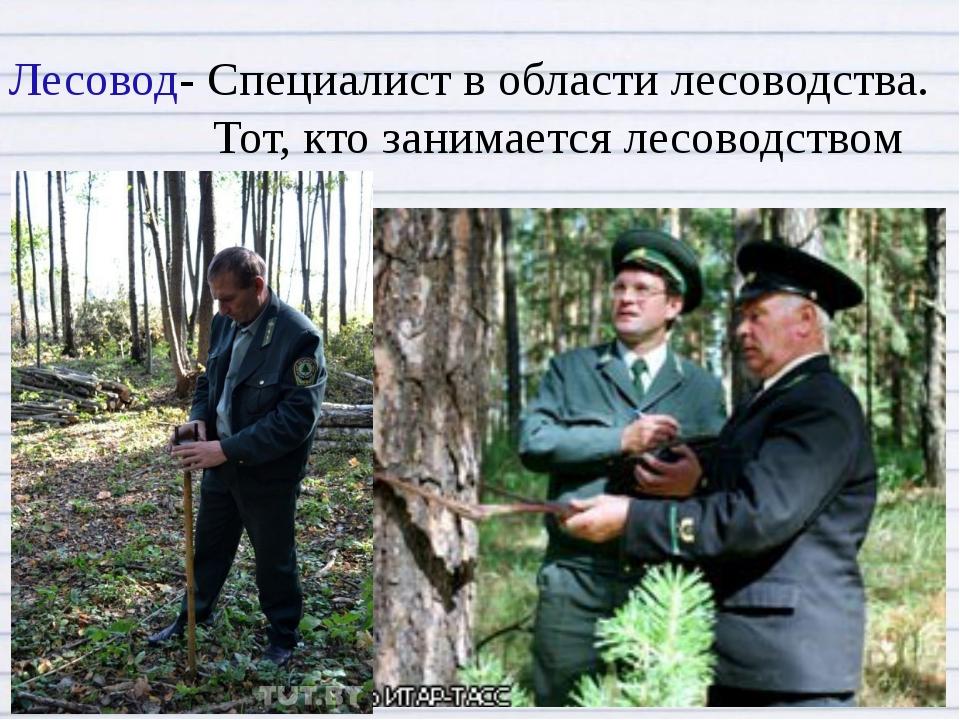 Лесовод-Специалист в области лесоводства. Тот, кто занимается лесоводством