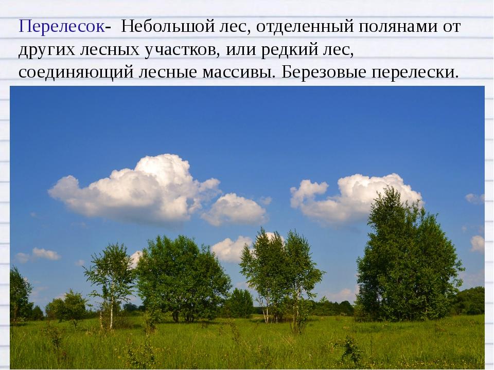 Перелесок- Небольшой лес, отделенный полянами от других лесных участков, или...