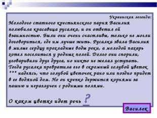 Украинская легенда: Молодого статного крестьянского парня Василия полюбила кр