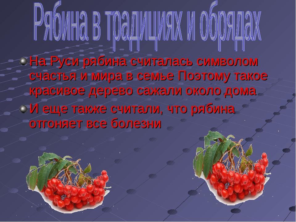 На Руси рябина считалась символом счастья и мира в семье Поэтому такое красив...