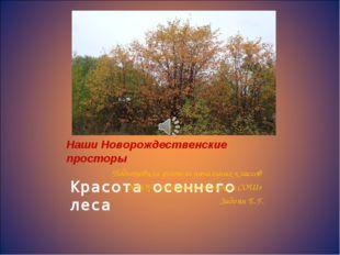 Наши Новорождественские просторы Наши Новорождественские просторы Подготови