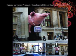 Свинья застряла. Реклама зубной нити Glide отSaatchi &Saatchi NY.