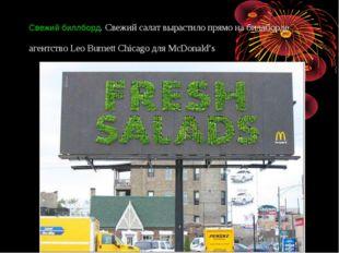 Свежий биллборд. Свежий салат вырастило прямо набиллборде агентство Leo Burn