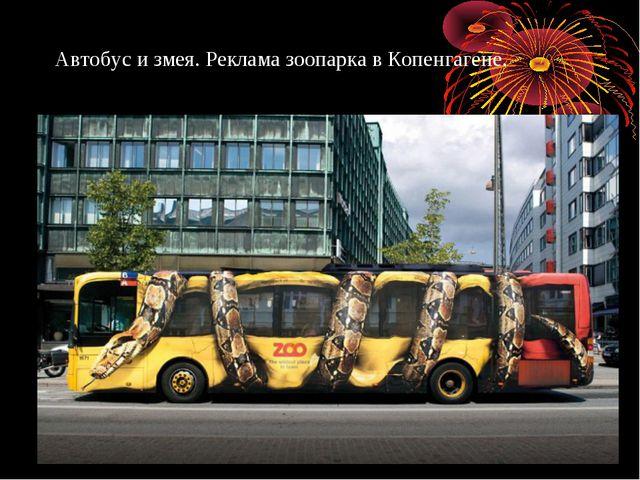 Автобус измея. Реклама зоопарка вКопенгагене.