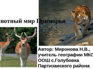 . Автор: Миронова Н.В., учитель географии МКОУ ООШ с.Голубовка Партизанского