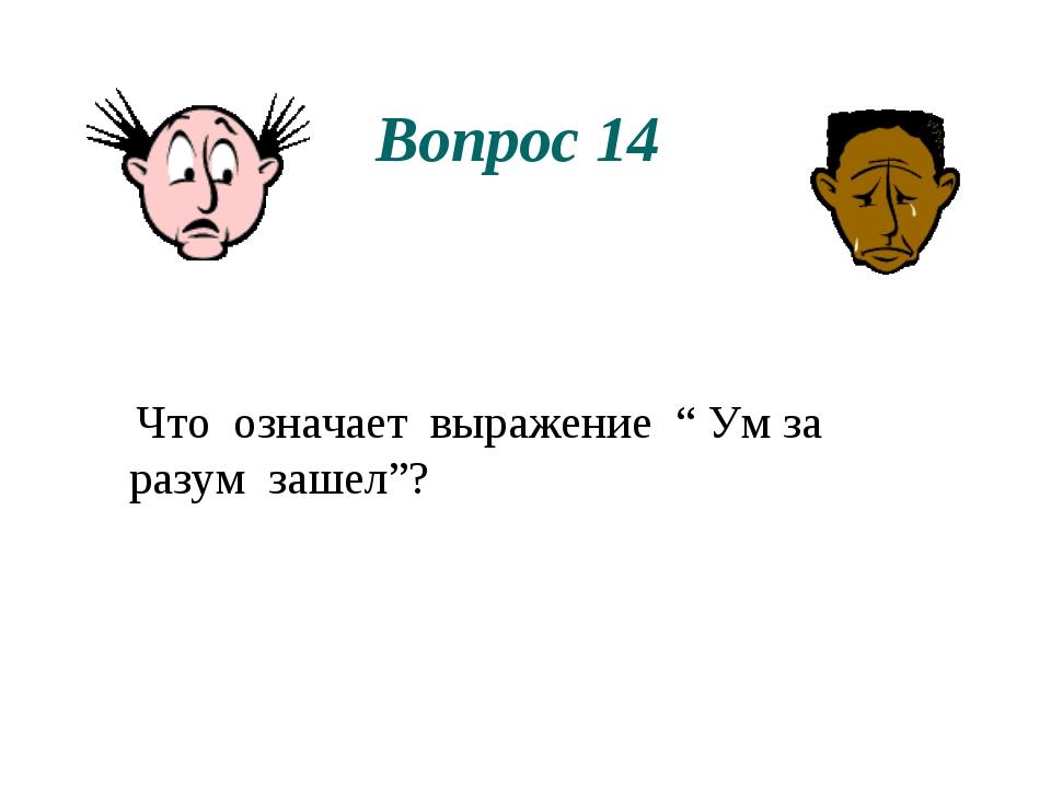 """Вопрос 14 Что означает выражение """" Ум за разум зашел""""?"""