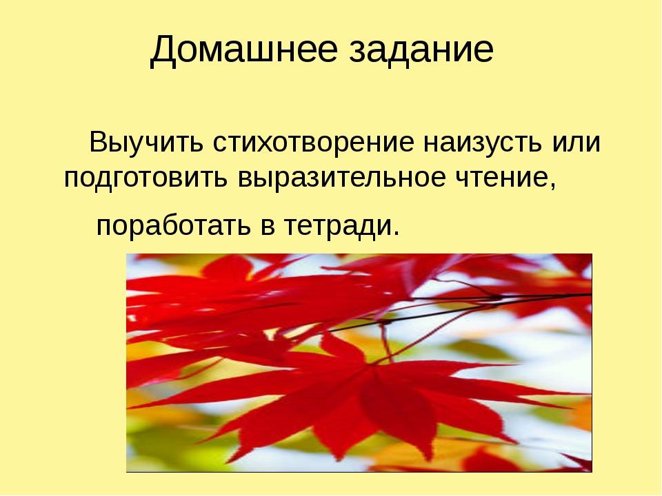 Домашнее задание Выучить стихотворение наизусть или подготовить выразительное...